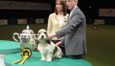 Crufts_dog_show_2011_(8652877556)